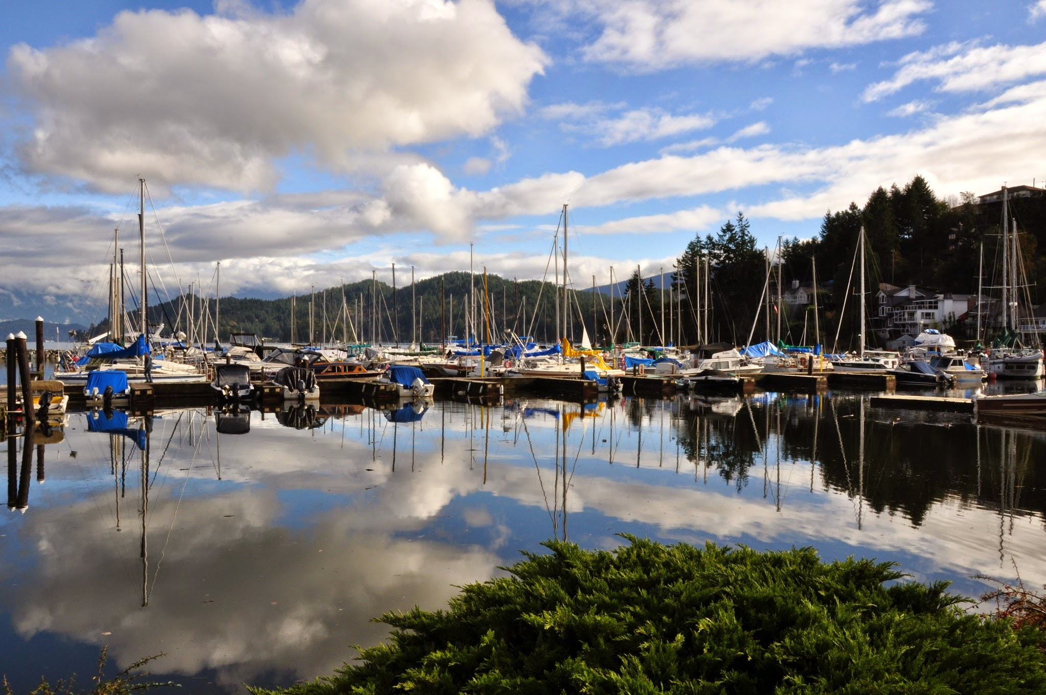sunshine coast tour gibsons